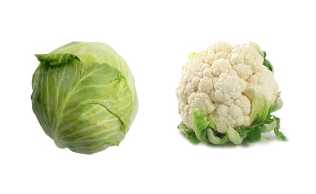 cabbage and cauliflower-stayreading